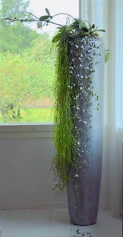 Korkea harmaa linearis + muuta kukka& ruukku