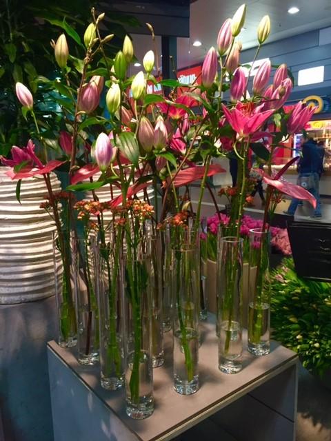 Liljaesillepano Dusseldorf kukkakauppa