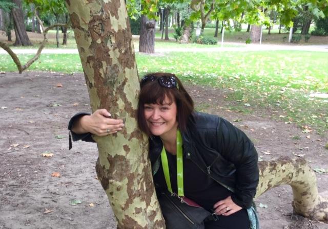 Katri ja plataanipuu
